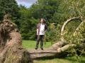 Sturm-Ela-Beispiel-Tage-später-2014-06-15