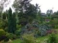 Sturm-Ela-im-Garten-2014-06-10